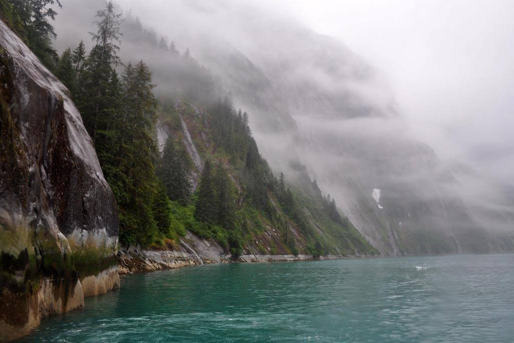 In southeast Alaska, a misty fjord with forest on steep slopes. FAO/Bill Ciesla Photo created: 8/2012